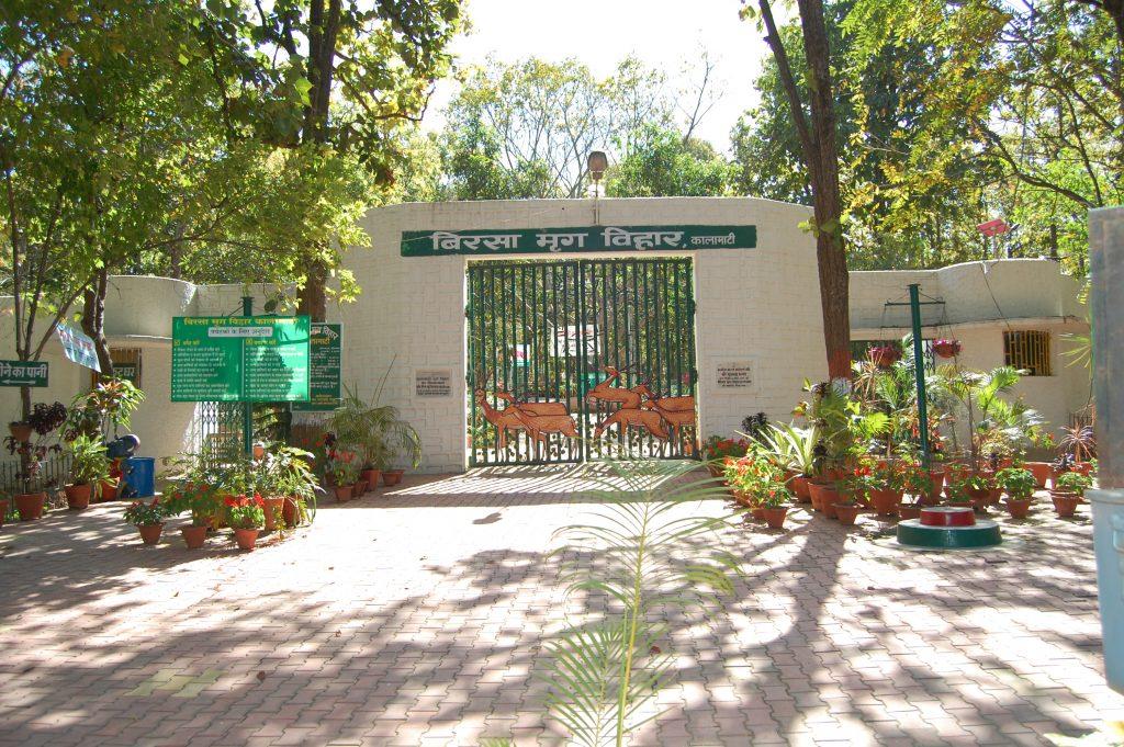 Dear park outside Khunti