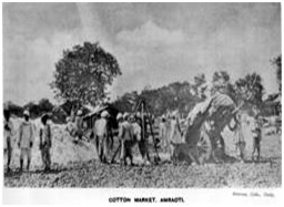 Cotton Market Old Photo.
