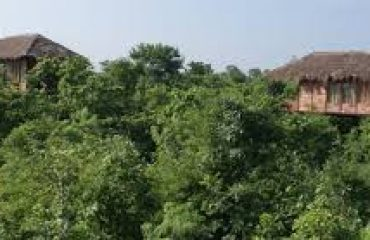 Bar Navapara Forest Area and Nature View