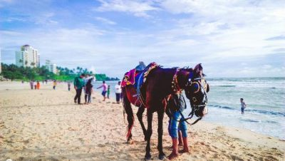 Payyambalam Beach Horse Ride