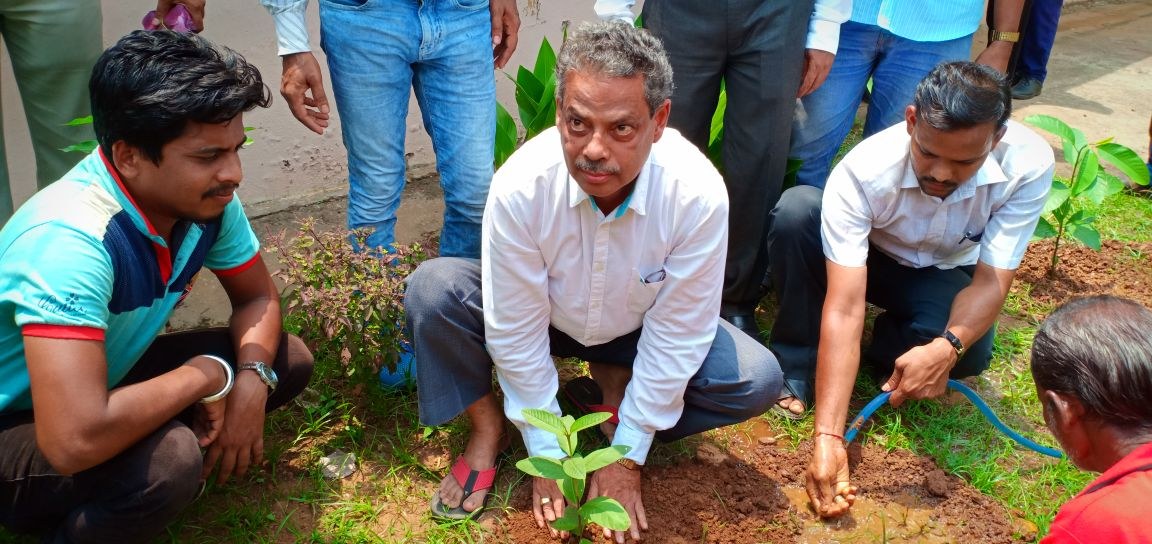World Environment Day Observed by DLSA, dhenkanal