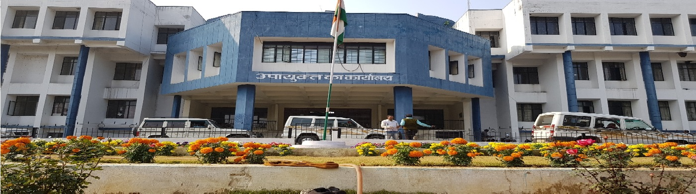 collectorate koderma