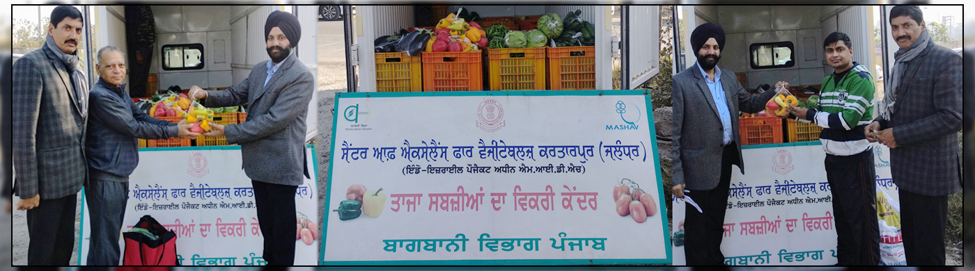 Center Of Excellence for Vegetables Kartarpur, Jalandhar under Indo-Israel project M.I.D.H. Fresh vegetables sale point.