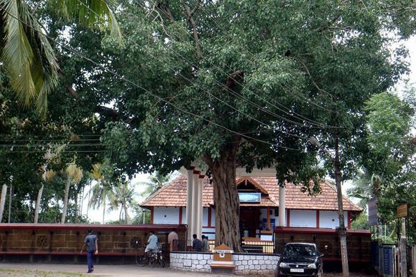 Payammal Shathrughna Swami Temple