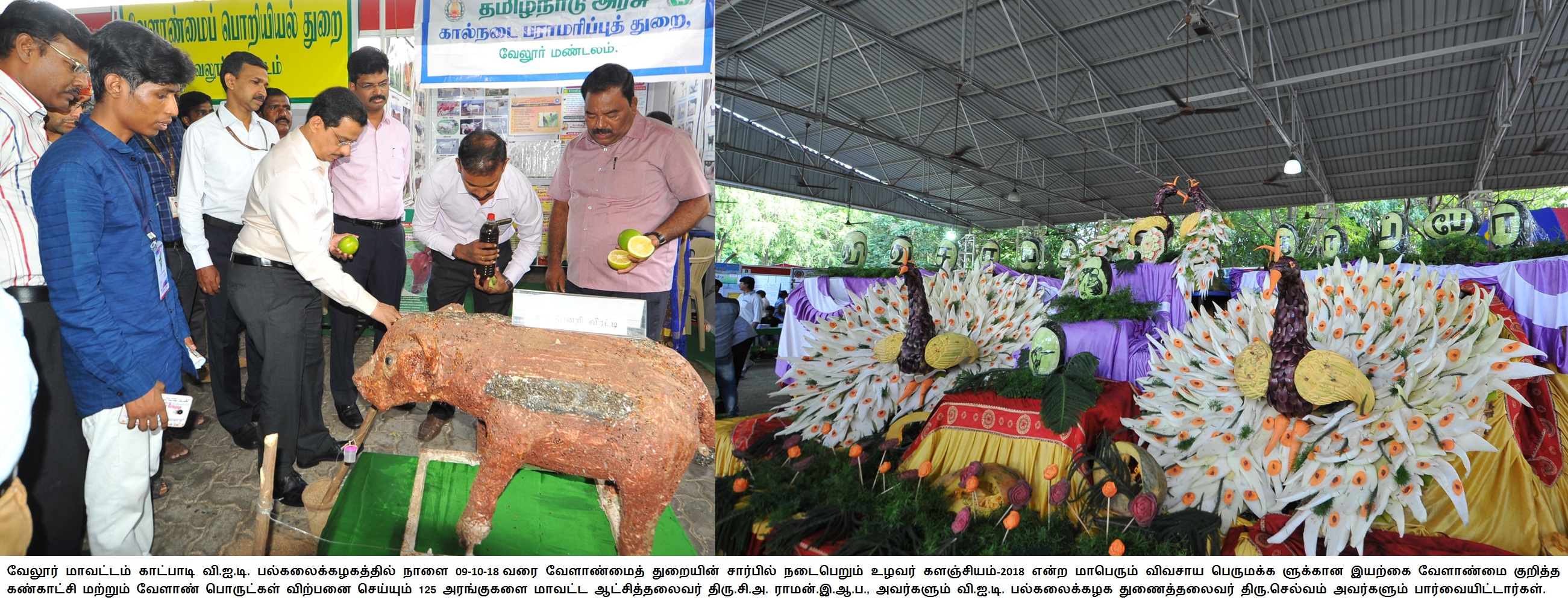 Organic farming exhibition and agricultural products sales 08/10/2018