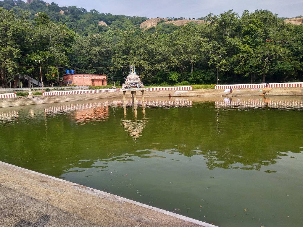 Temple Pond, Valli malai