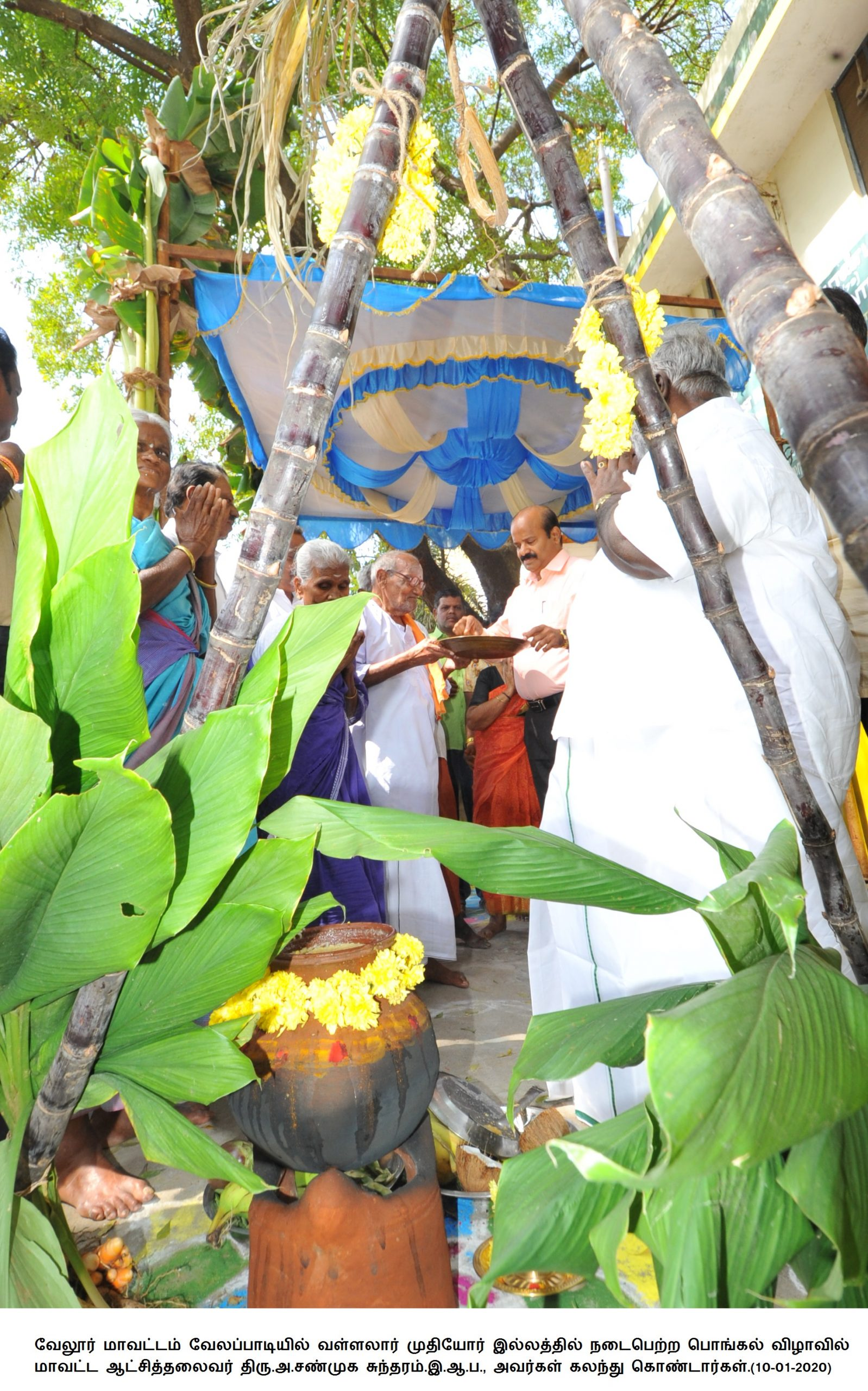 Pongal Festival Celebrated at Velapadi Vallalar Old-age Home 10/01/2020