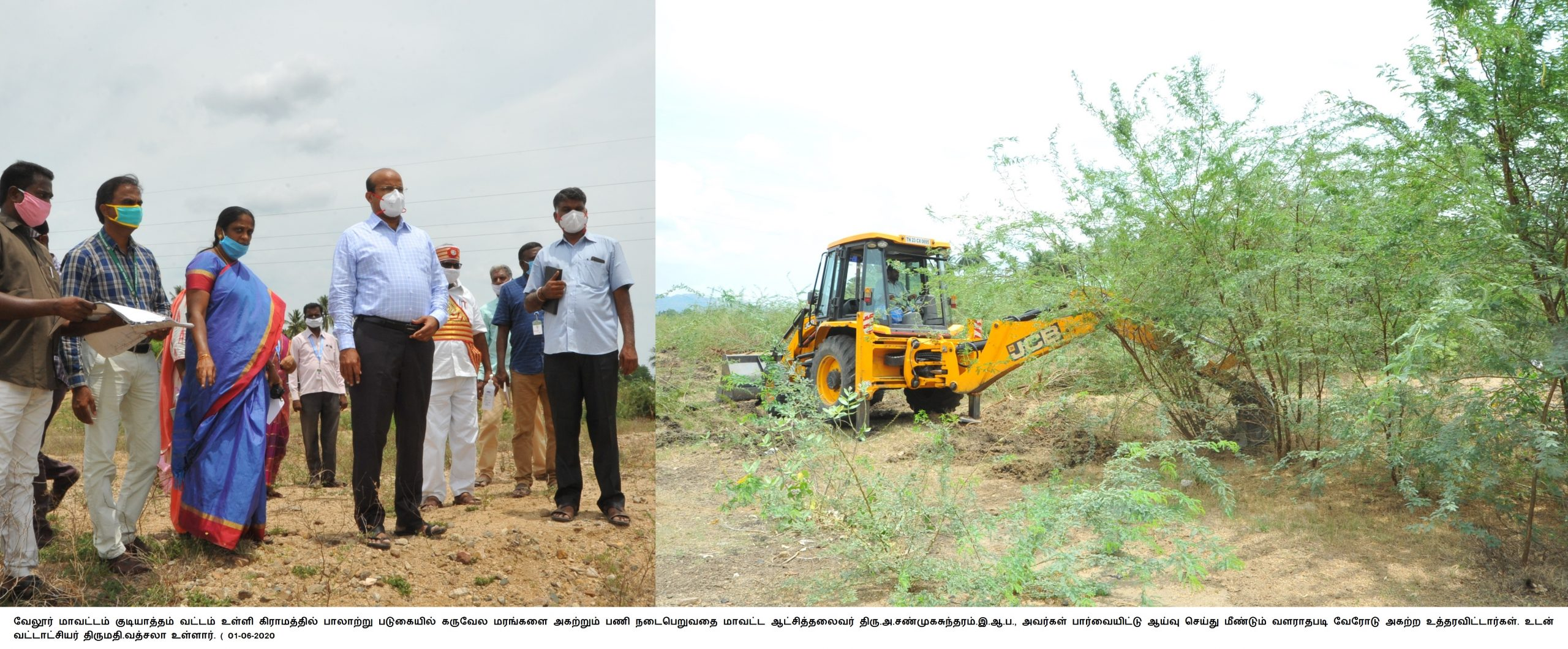 District Collector Inspected Removal of Gourmet Tree at Palar River 01-06-2020