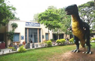 Government Museum, Vellore