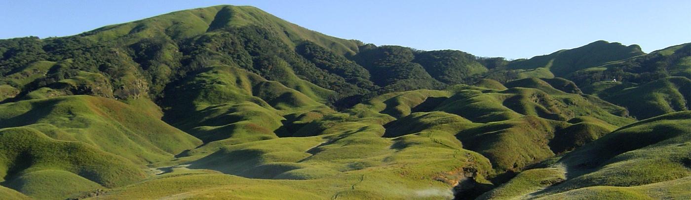 Dzükou Valley