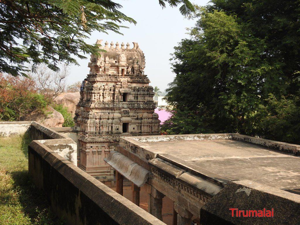 Jain Temple - Tirumalai.