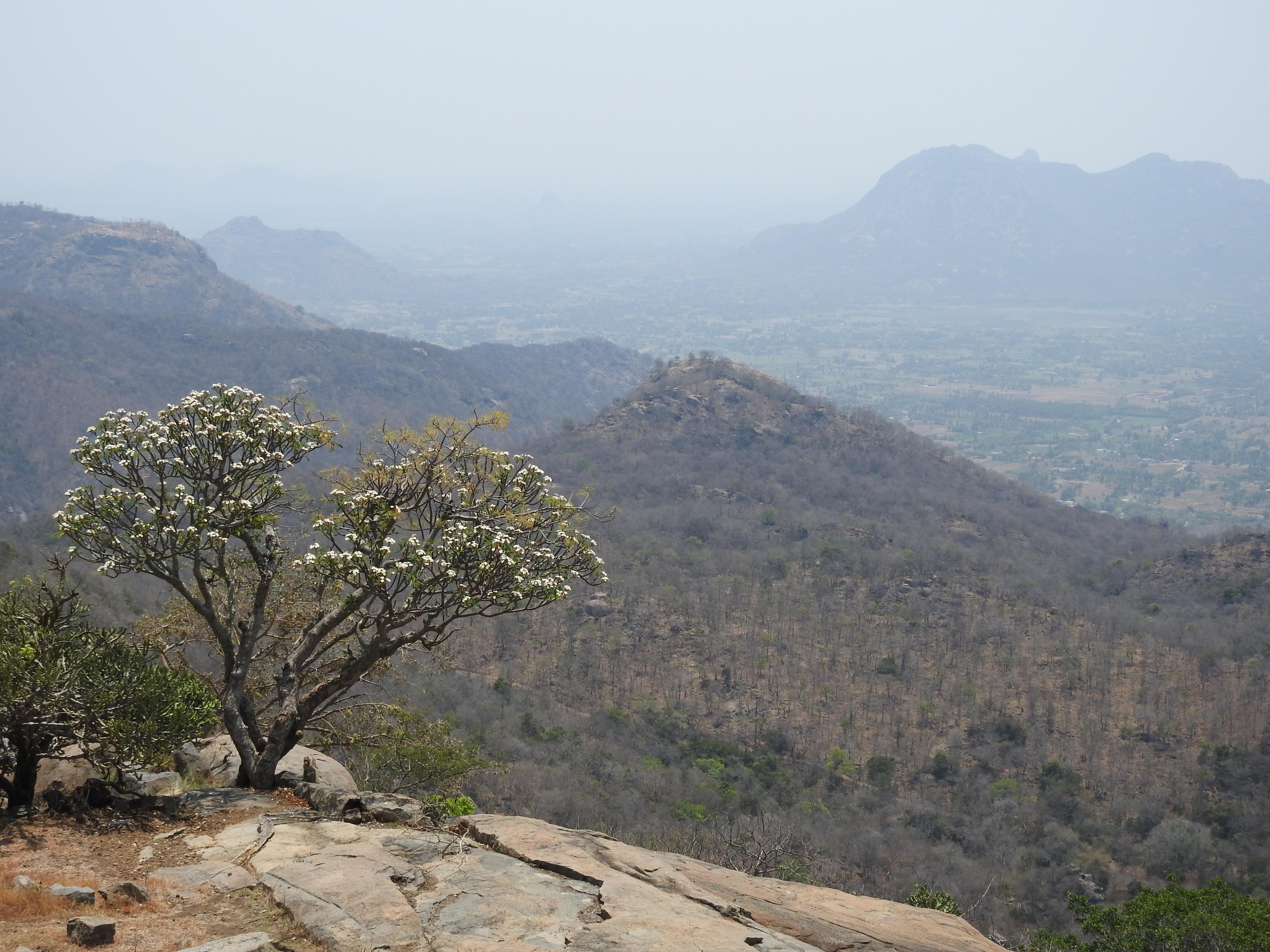 ரேணுகாம்பாள் திருக்கோயில்