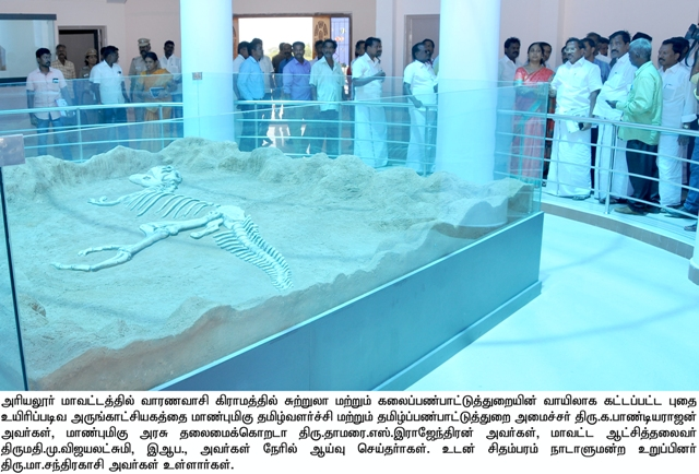 Inspection of Govt. Museum