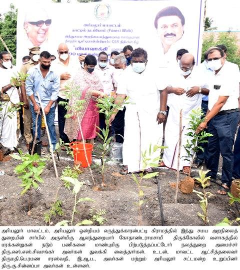 Tree planting function