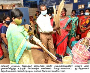 District Collector's field inspection
