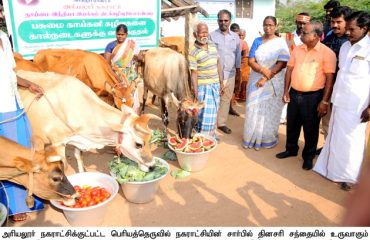 Wastage of Vegetables to Animals