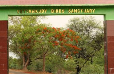 Vettangudi Bird Sanctuary Entrance.