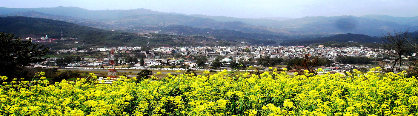 Rajouri City View