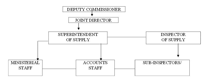 Supply Branch Organization Structure