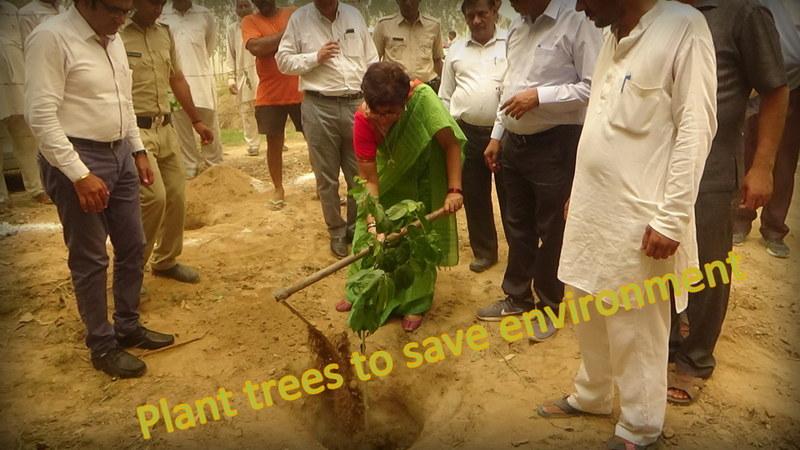 environment save