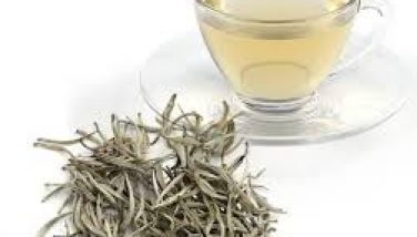 Darjeeling_White_Tea