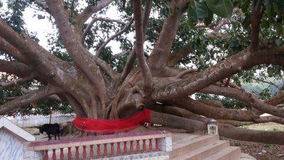 চৌদ্দদেবতার মন্দির, কৈলাশহর