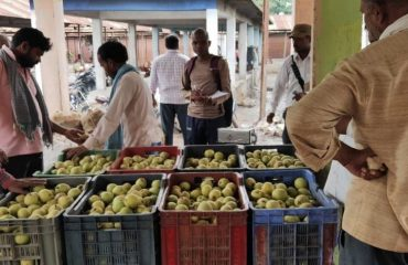 Pear Selling