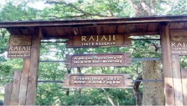 Rajaji National Park1