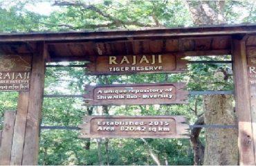 राजाजी राष्टीय पार्क