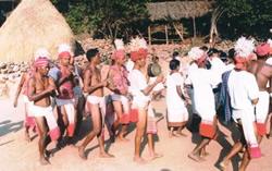 Saurya Tribe