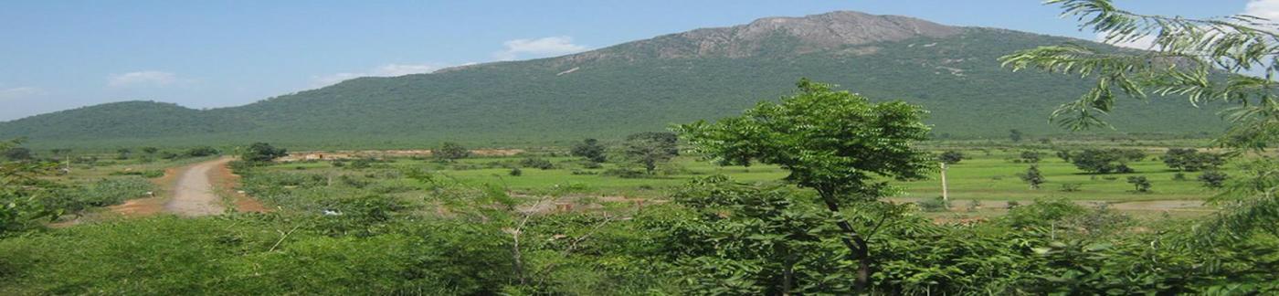 Dalha pahad : Tourist Place