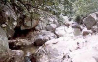 पर्यटन स्थल : दमाऊधारा