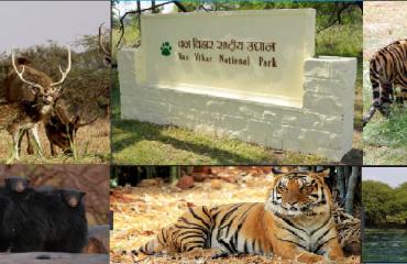 Van Vihar National Park.