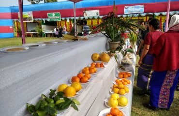 Fruits display stall at Arunachal Agi Expo 2018