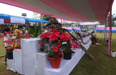 Flower Plants display during the Arunachal Agi Expo 2018 at CHF Pasighat
