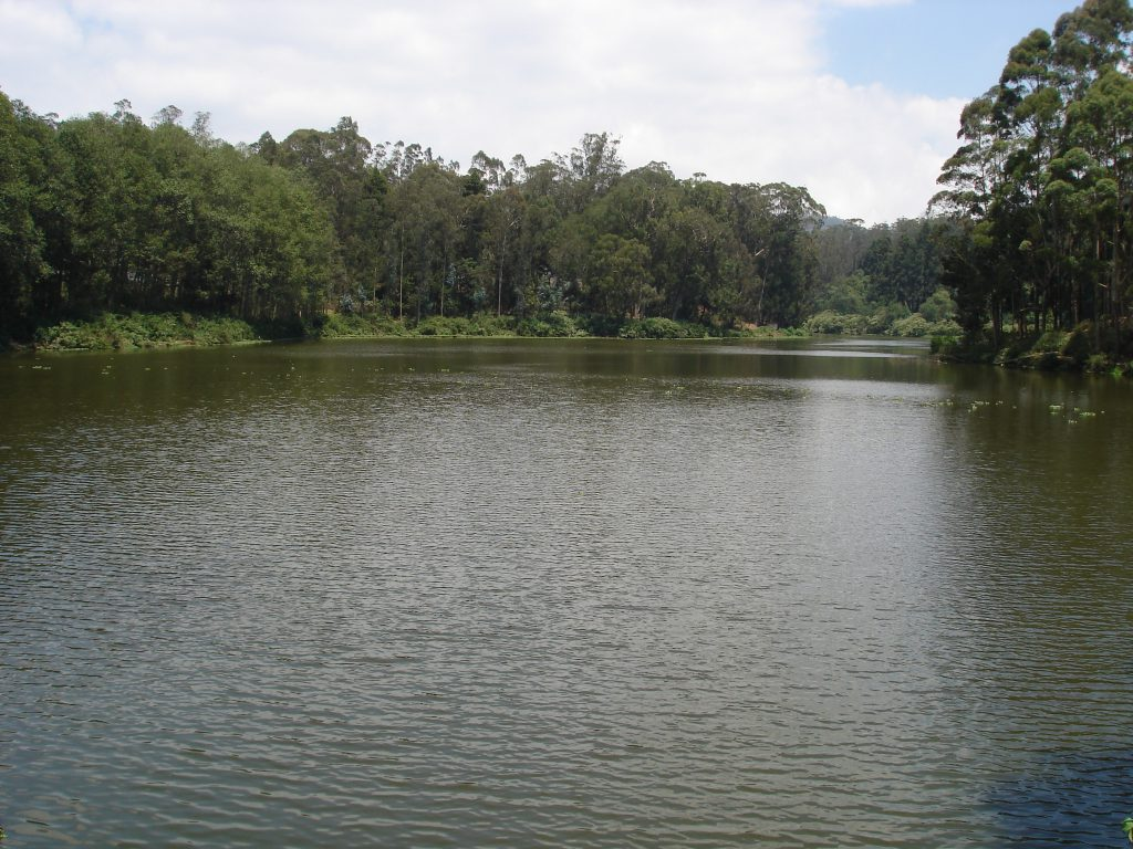 Ooty Lake Boat House