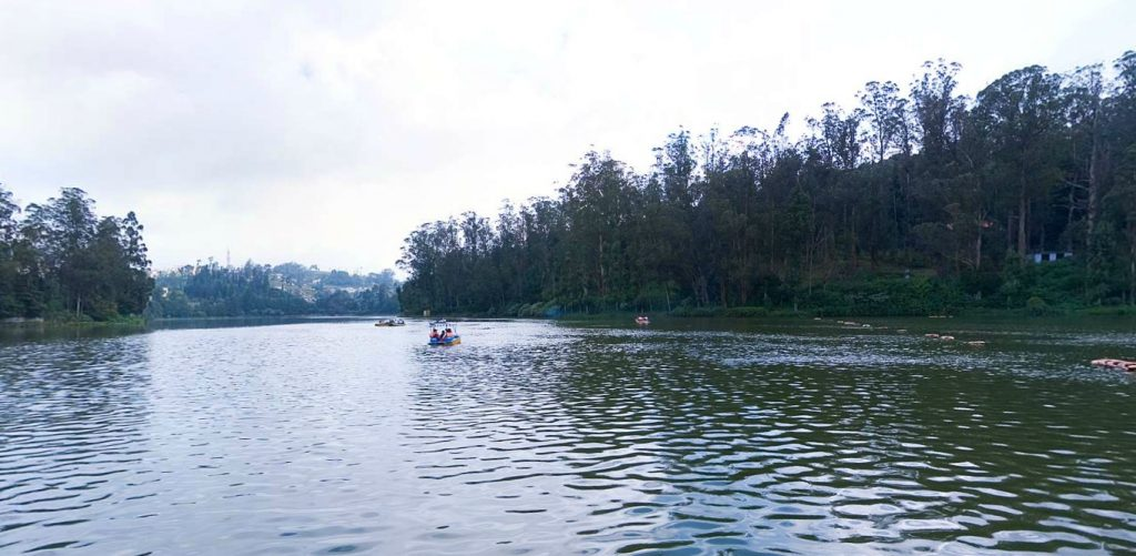 Ooty Lake View