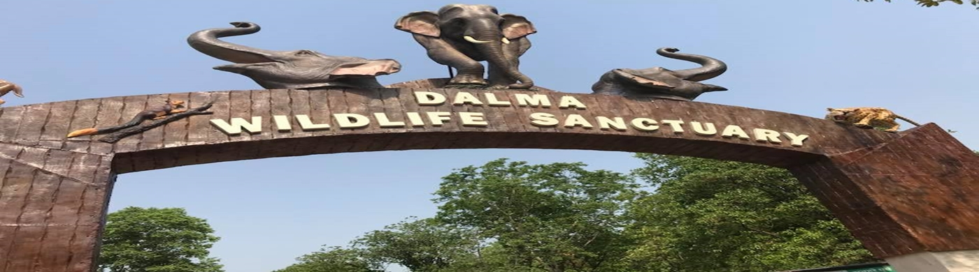 Dalma wildlife Sanctuary