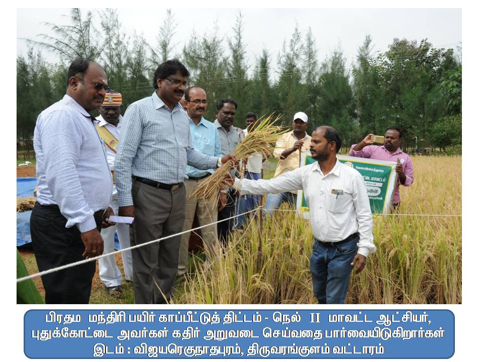 PFBY - District Collector Inspection - Vijayaregunathapuram.