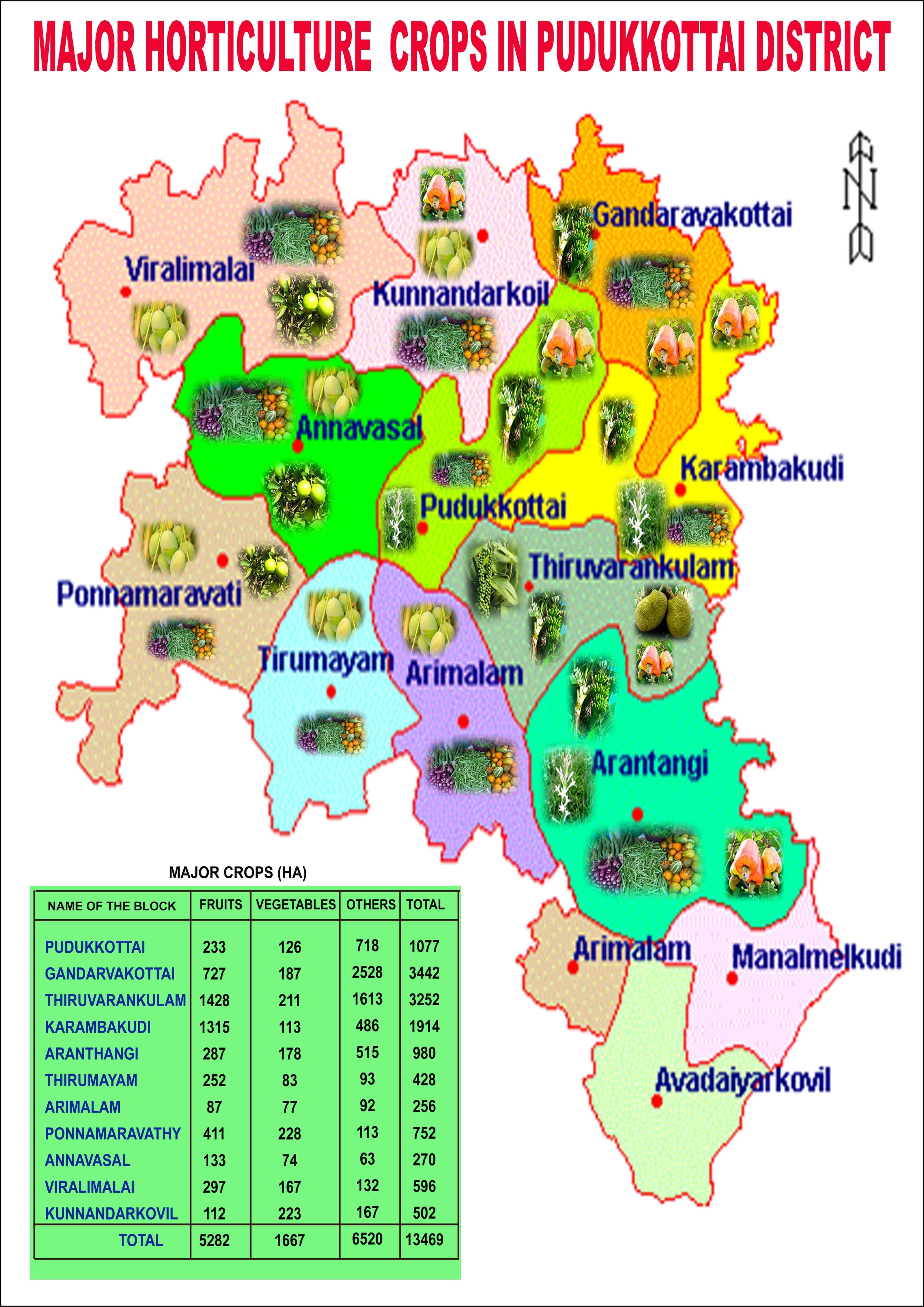 Horticulture | Pudukkottai District, Government of Tamilnadu