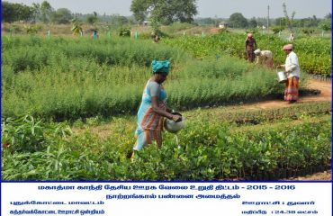 Rural Development - Nursery farming at Thuvaar.