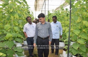 Horticulture- Director of Horticulture visit - HNM Polyhouse.