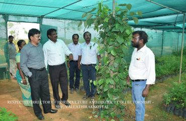 Horticulture - Director of Horticulture and District Collector visit - Vallathirakkottai.
