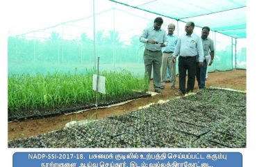NADP-SSI District Collector Inspection - Vallathirakottai.