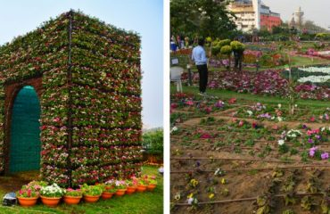 River Front Flower Show, Ahmedabad