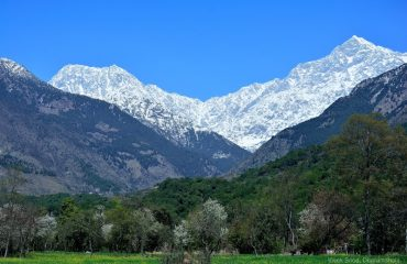 Valley View of Dhauladhar