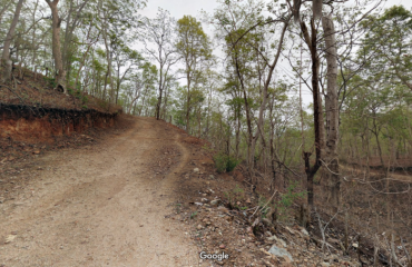 Road Track of Khaara Reserve Forest