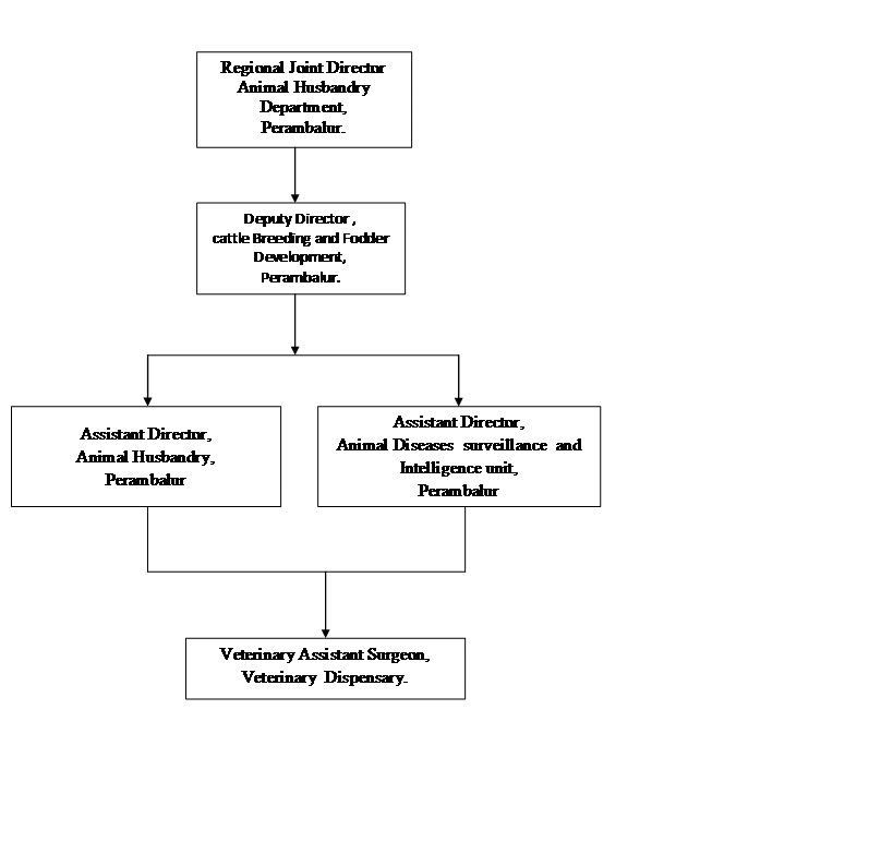 Animal Husbandry Department Administrative Structure