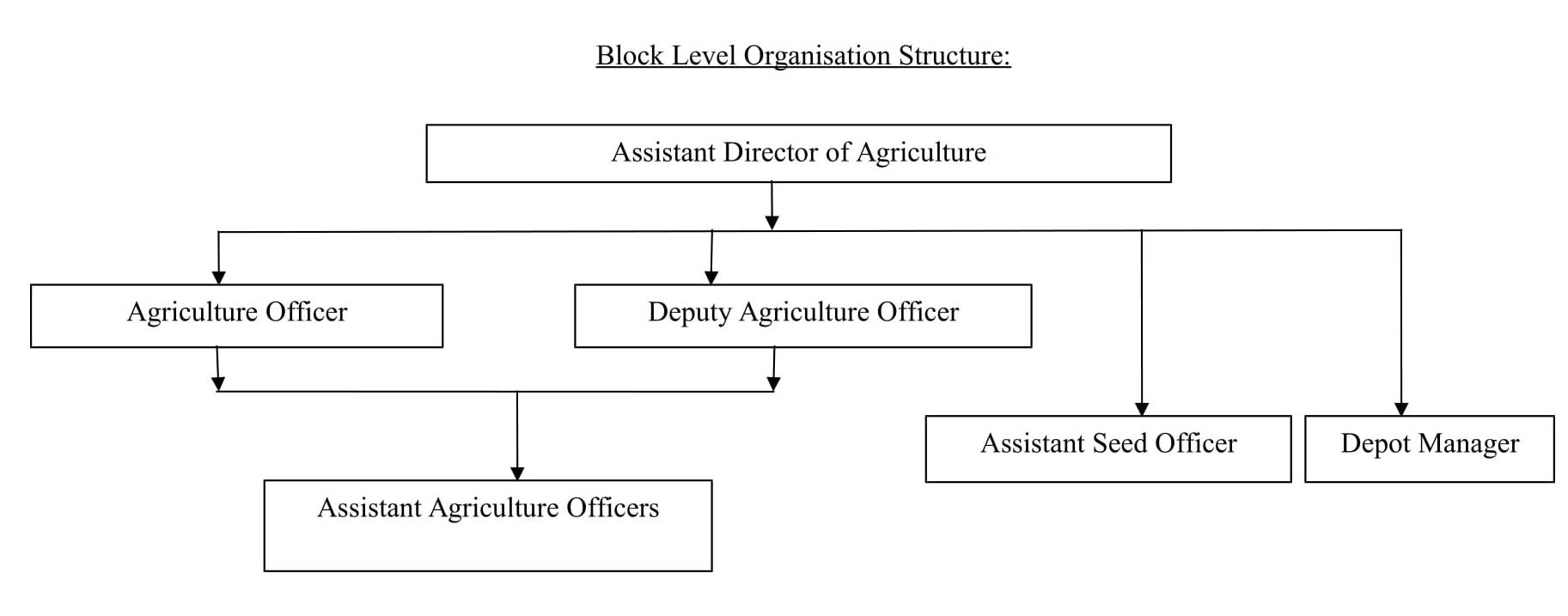 Agriculture Department - Block Level Organization Structure