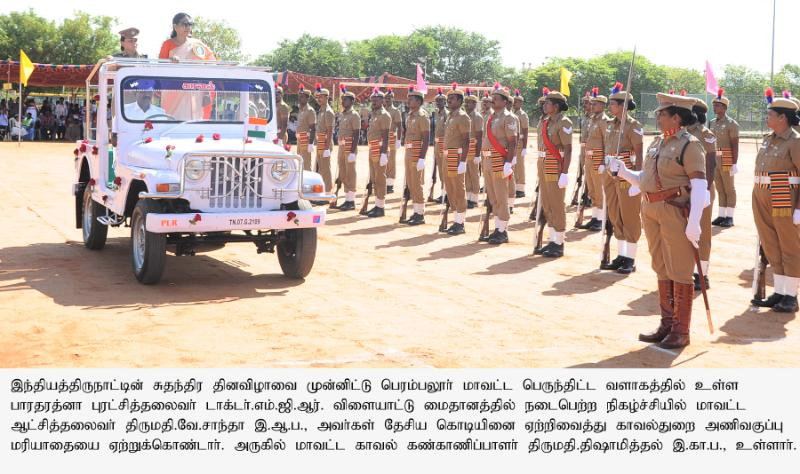 Collector Inspecting the Guard of Honour